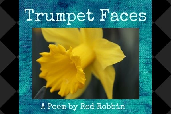 trumpet faces a poem