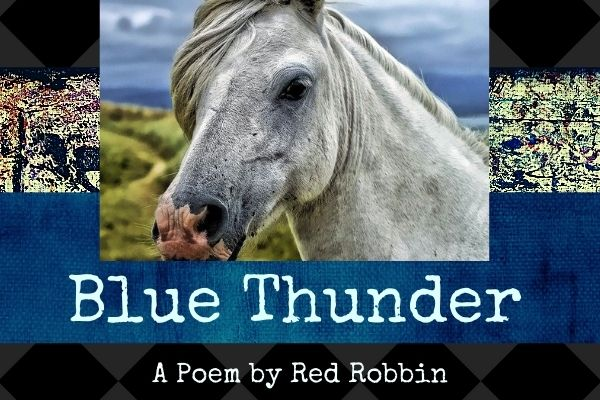 blue thunder a poem